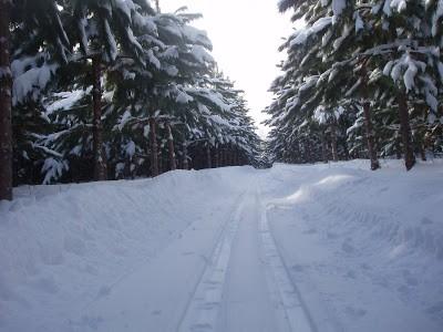 Sentiers de Sainte-Mélanie