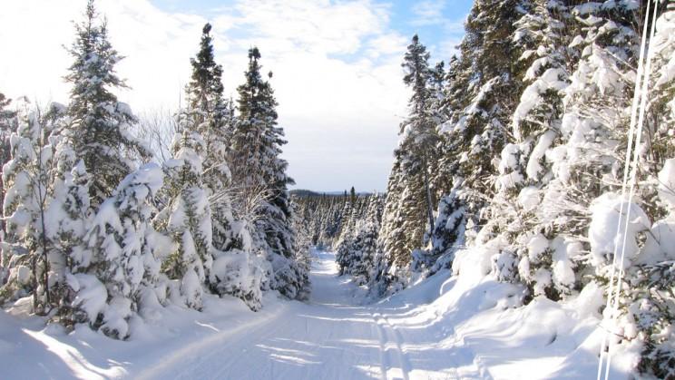 Club ski de fond Rapido
