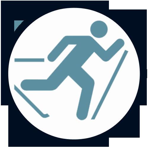 Skieurdefond_Icone_typique v3