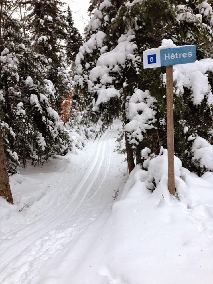 Cente de ski de fond Bellefeuille